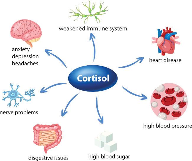 info grafica sintomatologia cortisolo alto
